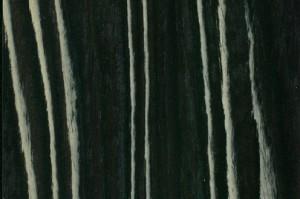 czarno bialy makassar