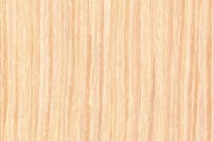 dab bielony